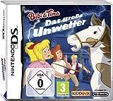 Das große Unwetter - [Nintendo DS]