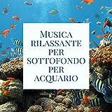 Musica rilassante per sottofondo per acquario