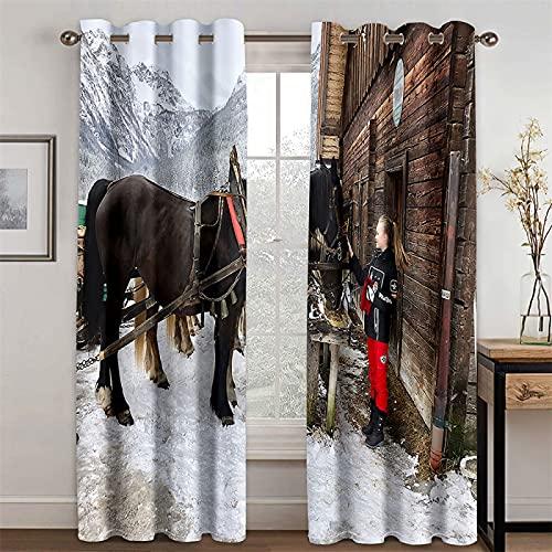 YUNSW Cortinas Realistas con Impresión 3D, Cortinas De Sombreado Y Reducción De Ruido para Sala De Estar Y Dormitorio, Juego De 2 (Total Width) 264x(Height) 160cm