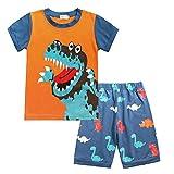 Kleinkind Kinder Baby Jungen Mädchen Karikatur Dinosaurier Drucken T. Hemd Kurze Hose Outfits einstellen A292