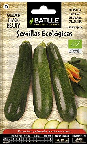 Semillas Ecológicas Hortícolas - Calabacín Belleza negra - ECO - Batlle