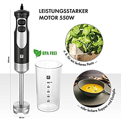 ZWILLING-Stabmixer