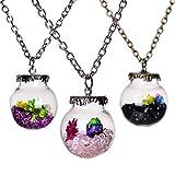 Original Drifting Bottle Lively Pendant Round Glass Necklace Creative Natural Drift Sand Women Dry Flower Collar Girls Gift 3Pcs