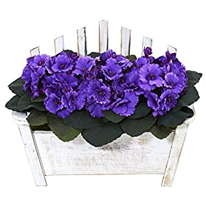 Nearly Natural African Violet Artificial Plant in Wooden Bench Planter, Purple,7.5″Dx14″Wx10.5″H