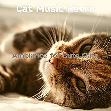 Ambiance for Cute Cats
