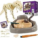 Science Can Kit de Excavación de Fósiles de Dinosaurios - Juegos de Arqueología Infantiles Participativos - Kit para Excavar Fósiles de Tyrannosaurus Rex Stem con Puzzle 3D para Niños de 8 Años y Más
