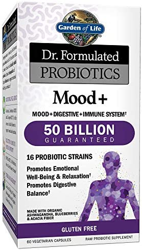 Garden of Life - Dr. Formulated Probiotics Mood+ - 60 Vegetarian Capsules (Shipped Cold)