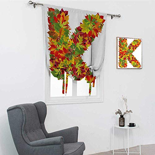 GugeABC Letter K Window Shades, Fresh Organic Fall Literature Fragrance Herbs Eco Woodland Inspired Capital K Sign Roman Blinds for Window, Multicolor, 42' x 72'