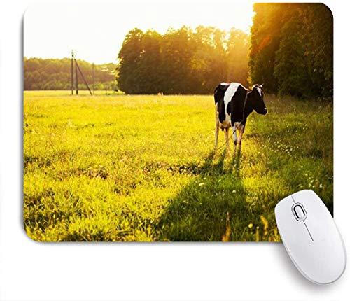 Benutzerdefiniertes Büro Mauspad,Weidende Mutterkuh-Kalb, die auf grünem Wiesengras-Sonnenlicht-Rindfleisch-Abendmilch-Himmel-Natur isst,Anti-slip Rubber Base Gaming Mouse Pad Mat