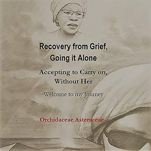 Recovery from Grief, Going It Alone audiobook cover art