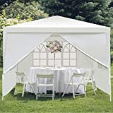 C-CHAIN 10'x10' Outdoor Waterproof Gazebo Canopy Tent W/One zipper Door and Three Windows, Portable Wedding Party Tent with Wind Rope, Outdoor Shelter Pavilion for Parties Commercial Activity(10'x10')