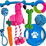 Dog Teething Toys for Puppies - Best Puppy Chew Toys Pack - Puppy Toys for Teething Bundle - Teeth Cleaning Reduce Anxiety - Gum Massage Variety - Small or Medium Breeds - 8pc