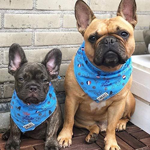 Bulltastic Vive La Frenchie Cooling Pet Dog...
