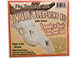 The Tannery Skull Bleaching Kit