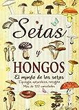 Setas y hongos (Sabor y tradición)