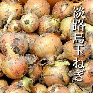 淡路島玉ねぎ5kg(M〜LL約15-20個)
