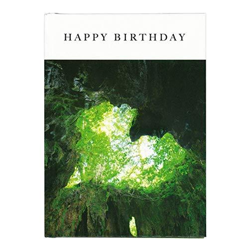 学研ステイフル メッセージカード 誕生日 メッセージブック 日本の絶景 B10040