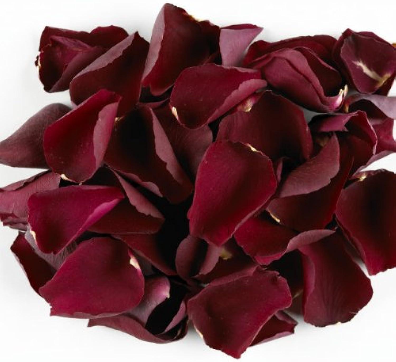 5 Litre Bag of Ruby Kiss Freeze Dried pink Petal Confetti