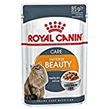Royal Canin Intense Beauty Frischebeutel Multipack