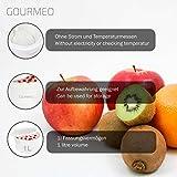 Zoom IMG-1 gourmeo yogurtiera per yogurt naturale