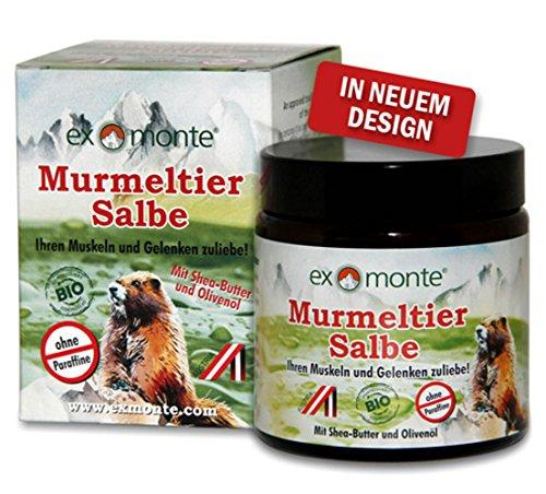 Original exmonte Murmeltier-Salbe, 1x 100ml !