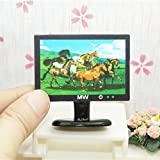rycnet Miniatur-LCD-TV-Modell für Puppenhaus, Maßstab 1:12, Schwarz