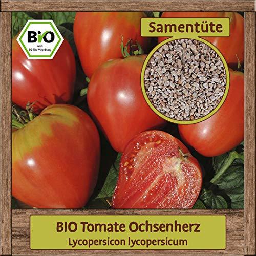 Samenliebe BIO Gemüse Samen Tomate Ochsenherz (Lycopersicon lycopersicum) | BIO Tomatesamen Gemüsesamen | BIO Saatgut für ca. 15 Pflanzen