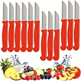 Fruit Paring Knives - Knife Set of 12 - with Stylish Leather Look Handle - Small Kitchen Knife Fruit Vegetable Tomato Knife 2.75' Inch Utility Small Straight Edge Spear Point - Boxed Best Gift Idea