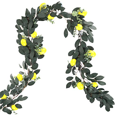 æ— 6ft Long Artificial Silver Dollar Eucalyptus Leaves Garland,Hanging Eucalyptus Vines Garland with Lemon Blueberry,Flower,Fake Greenery Vines Swag for Wedding Backdrop Arch Wall Decor