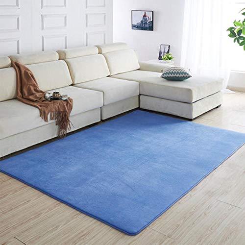160 x200 Kortharig koraal fluwelen tapijt woonkamer vloermat salontafel mat slaapkamer deken bed vloerkleed vloermat deurkussen, 8200 x 180 cm