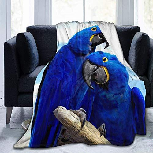 Kteubro Blue Parrot Hugging Print Ultra-Soft Fleece Blanket Franela Terciopelo Felpa Manta Manta Cama Sofá 3 Tamaño D1919