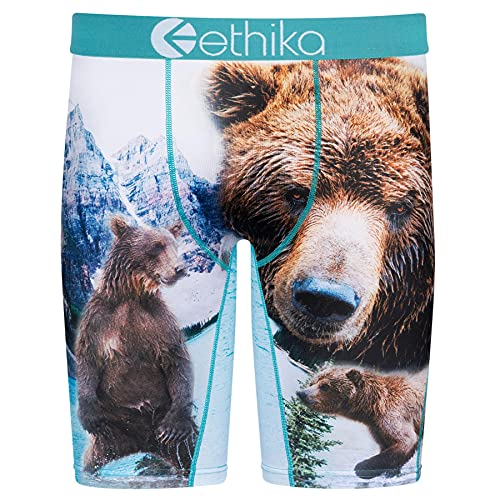 Ethika Mens Staple Boxer Briefs | Brother Bears (Assorted, Medium)