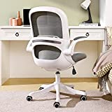 Home Office Desk Chair Ergonomic Computer Chair with Flip-Up Armrests...