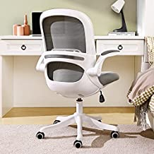 Home Office Desk Chair Ergonomic Computer Chair with Flip-Up Armrests Lumbar Support, Eggshell Chair, Small Cute Task Chair, Pink Modern Chair, Mid Back Mesh Chair, 250LBS Load-Bearing, Grey