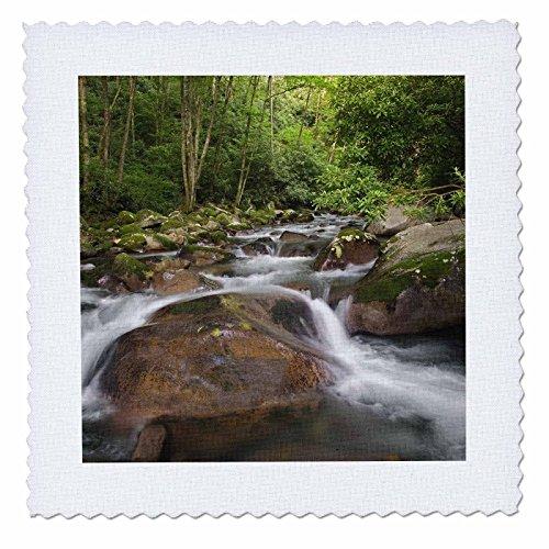 3dRose Big Creek, Great Smoky Mountains, North Carolina - Us34 Aje0139 - Adam Jones - Quilt Square, 12 by 12-Inch (QS_93185_4)