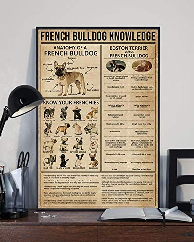 French Bulldog Knowledge Anatomy Frenchies poster 24x36 inches