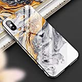 Cocomii Fancy Glass Marble Armor iPhone 6S Plus/6 Plus Funda Nuevo [Mármol Granito Abstracto] Pintura De Borde A Borde HD Recuadro Rectangular Case for Apple iPhone 6S Plus/6 Plus (FG.Earth Gray)