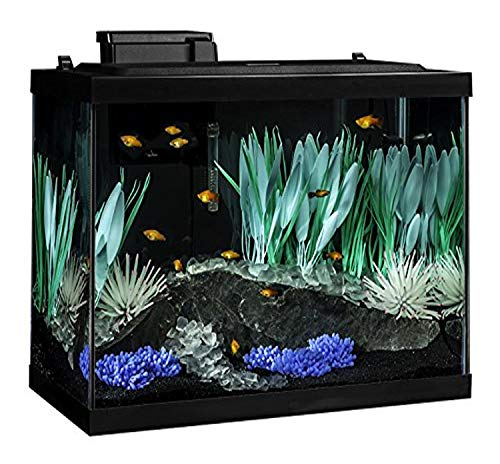 Tetra 20 Gallon Complete Aquarium Kit