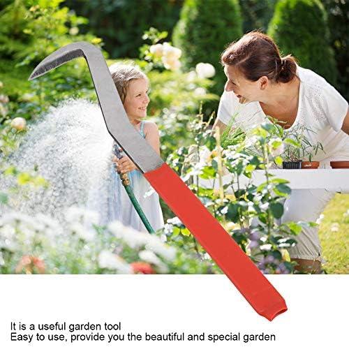 1 Pièce Bonsaï Kit Couteau de Jardin Lame De Gravure Sculpture Bonsaï Ciseau en Acier Bonsai Outil pour Jardin Fruit Arbre Greffage