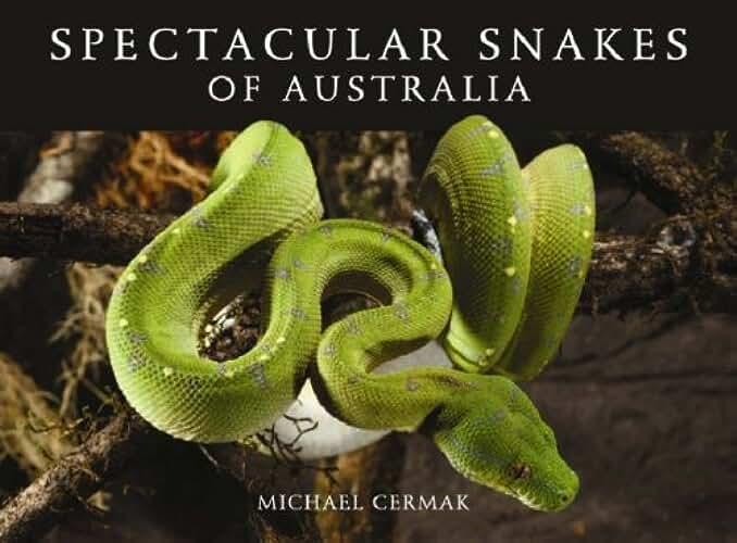 Spectacular Snakes of Australia (English Edition)