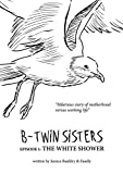 B-twin sisters: the funny struggles of modern women (English Edition)