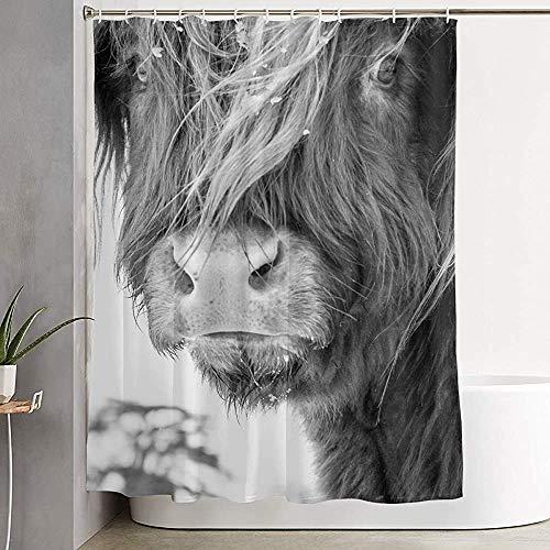 ABRAN Highland Cattle Nature Kuh Duschvorhang, mit Haken Dusche Bad Vorhang für Badezimmer, Polyester Bad Duschvorhang