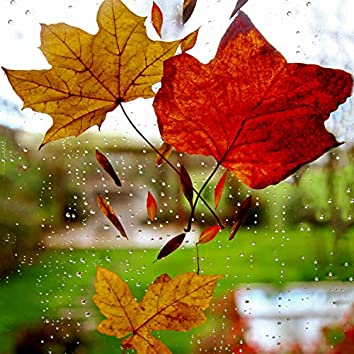 Peaceful Rain Sounds to Aid Relaxation & Massage