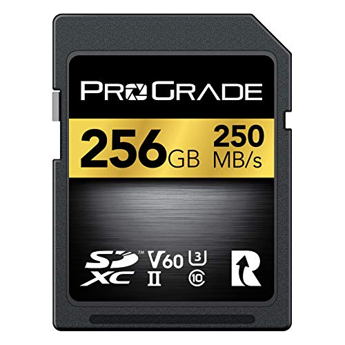 SD UHS-II 256GB Card V60 –Up to 130MB/s Write Speed and 250 MB/s Read Speed | for Professional...