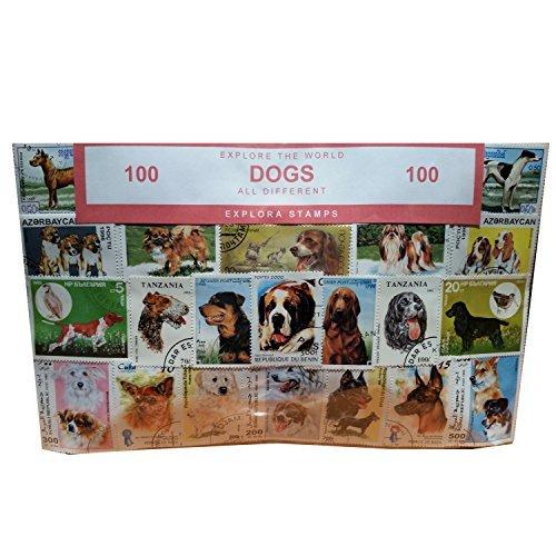 Dogs of the World-Timbro, collezione, Souvenir con animali, cane Speicher/Memoria! altamente da collezionare francobolli provenienti da tutto il mondo, vari, 100 diversi timbri! Timbre/Stempel/Francobollo/Sello!