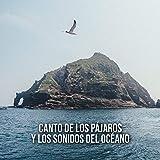 Canto de los pájaros y los sonidos del océano – Sonidos relajantes de la naturaleza con música instrumental en el piano, meditacion de relajacion, atencion plena, canciones de cuna para dormir
