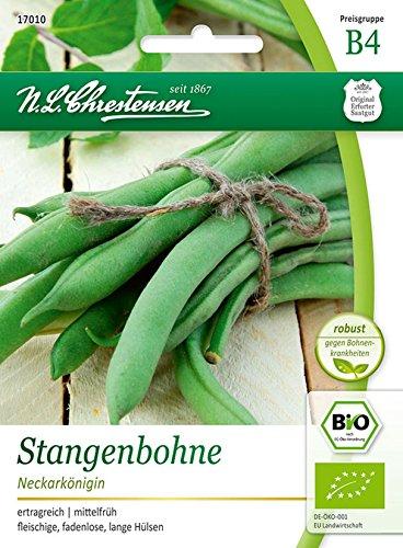 Bio Stangenbohne 'Neckarkönigin' Saatgut Samen (ertragreich, mittelfrüh)