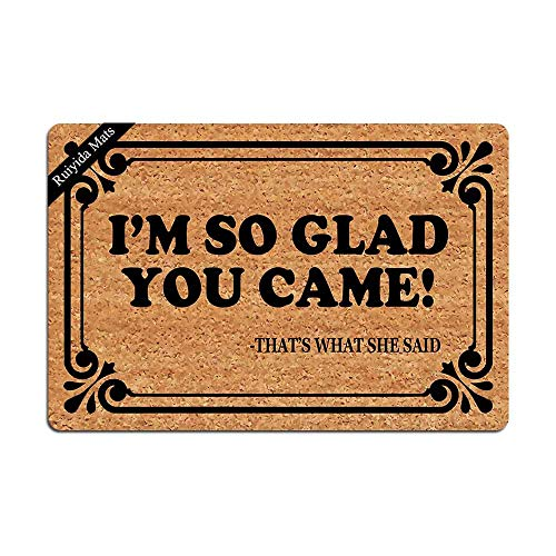 Entrance Mat I'm So Glad You Came Funny Doormat Door Mat Decorative Indoor Non-Woven 23.6 by 15.7 Inch Machine Washable Fabric Top
