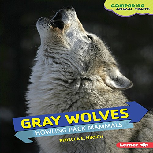 Gray Wolves audiobook cover art