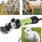 Cizalla de ovejas eléctrica de 320 W, máquina de corte de velocidad eléctrica, cortadora de animales, juego de corte...
